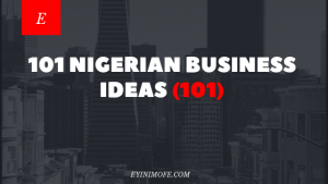 101 Nigerian Business Ideas (101)